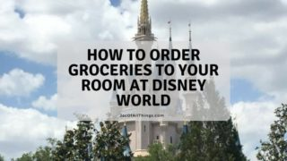 How to Order Groceries to Your Room at Disney World