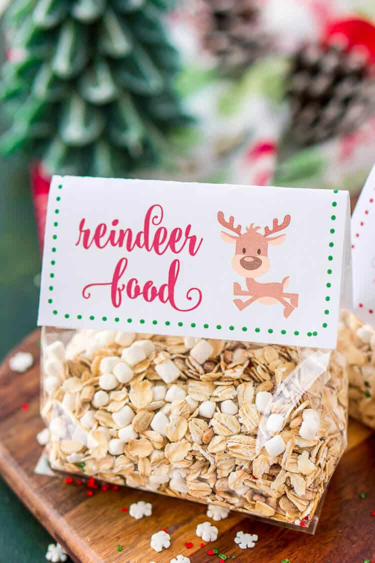 Family Christmas tradition idea to make magic reindeer food