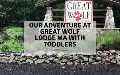 Our Adventure at Great Wolf Lodge MA with Toddlers
