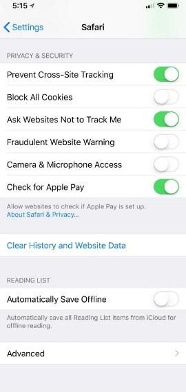 Clear Browser Data to free up space on iPhone