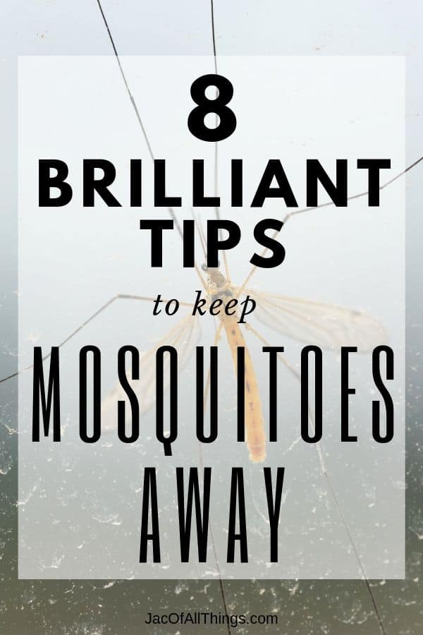 How to Keep Mosquitoes Away. Mosquito repellent tips!