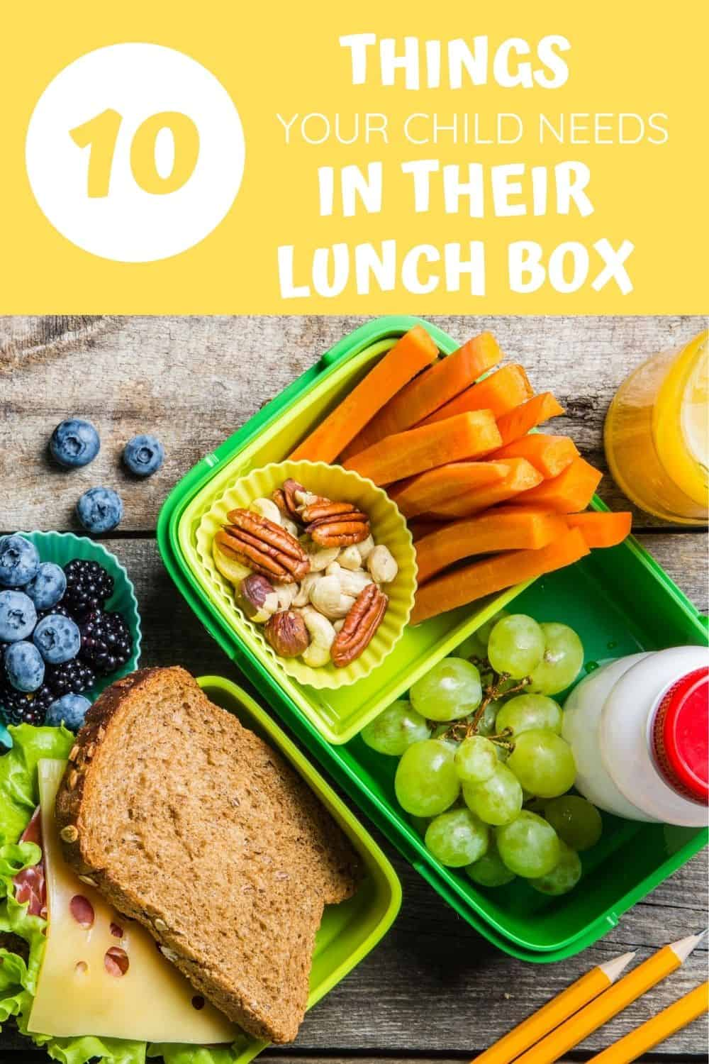 school lunch box must haves